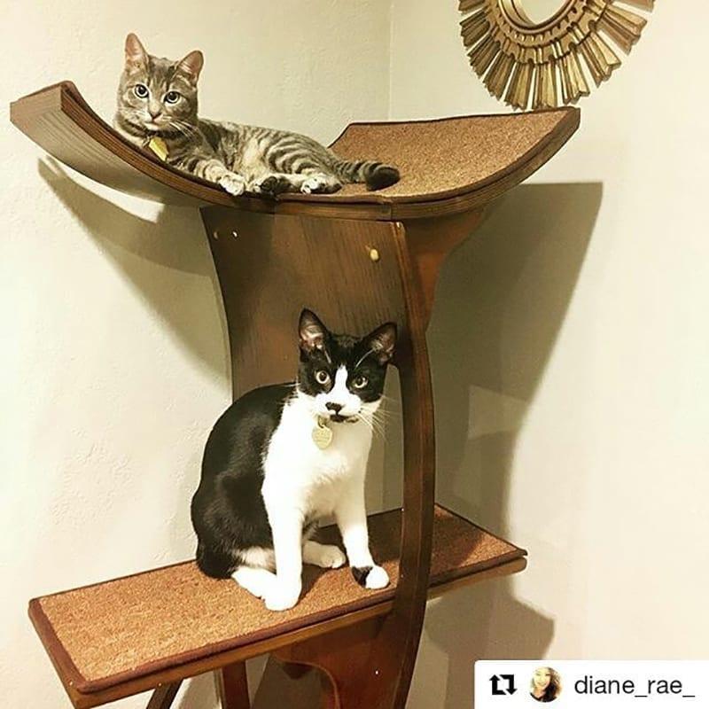 Lotus Cat Tower Mahogany