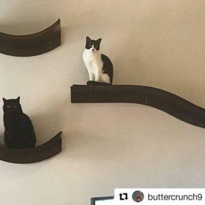 Lotus Branch Cat Shelf Espresso