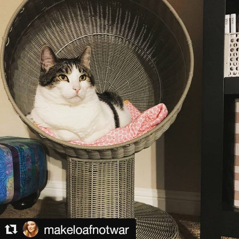 Kitty Ball Cat Bed Smoke