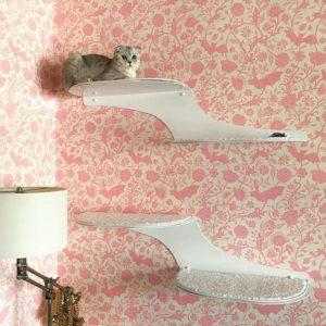 Cat Clouds Cat Shelf White