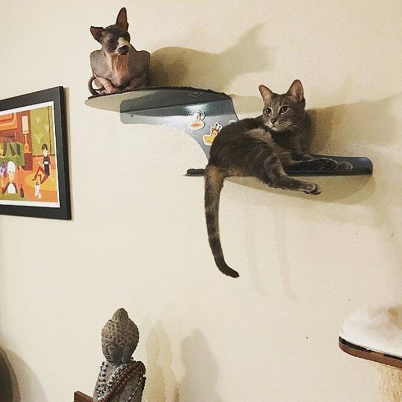 Cat Clouds Cat Shelf Titanium