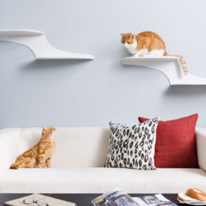 Cat-Cloud-Cat-Shelves-Features-2a