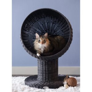Kitty Ball Cat Bed Furniture