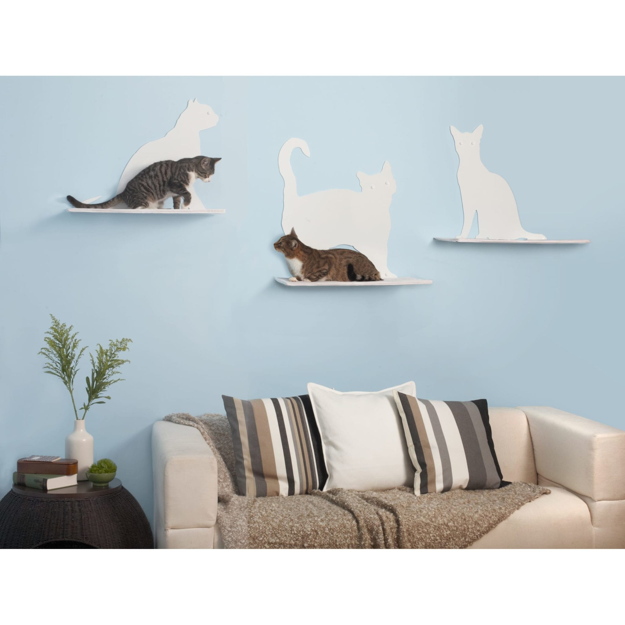 Wall Mounted Cat Furniture