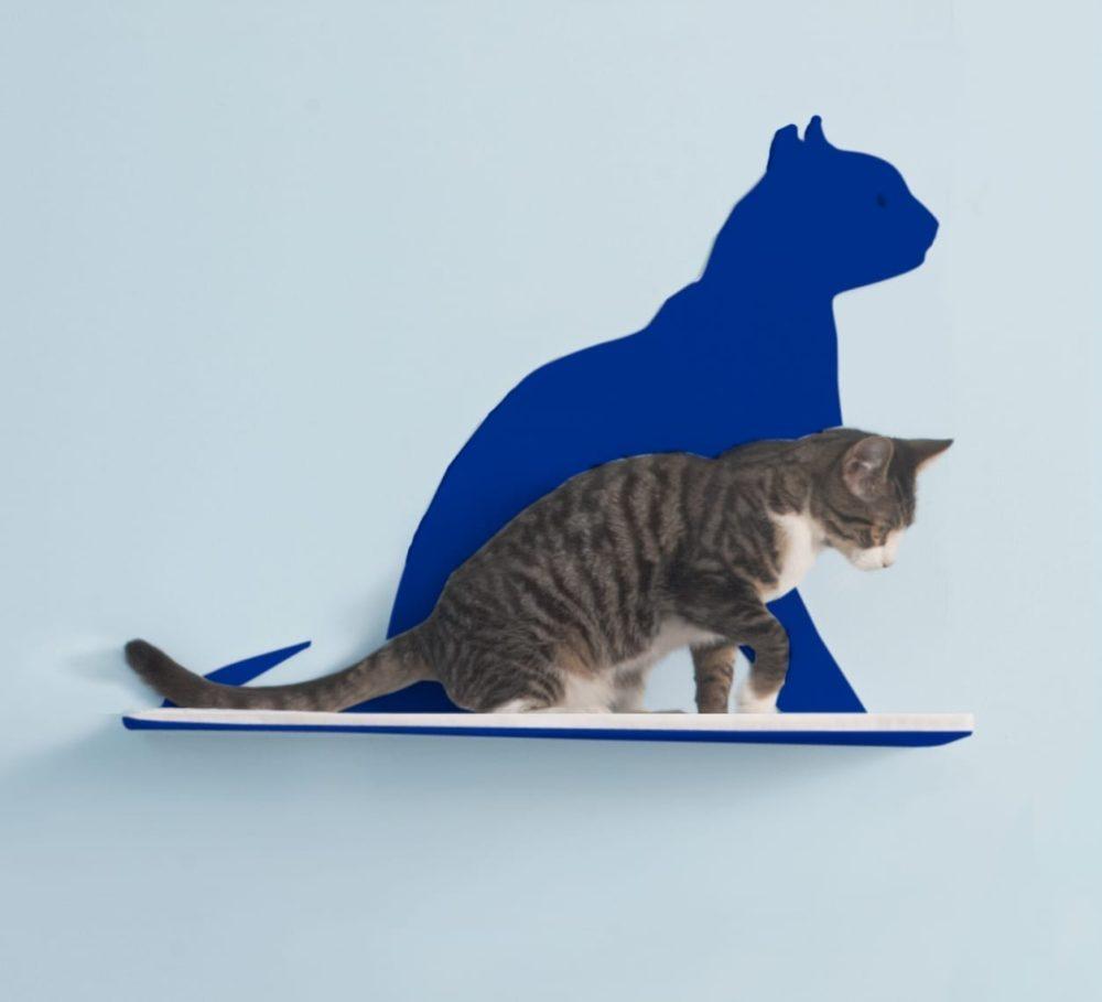 Cat Silhouette Cat Shelves Gaze Blue