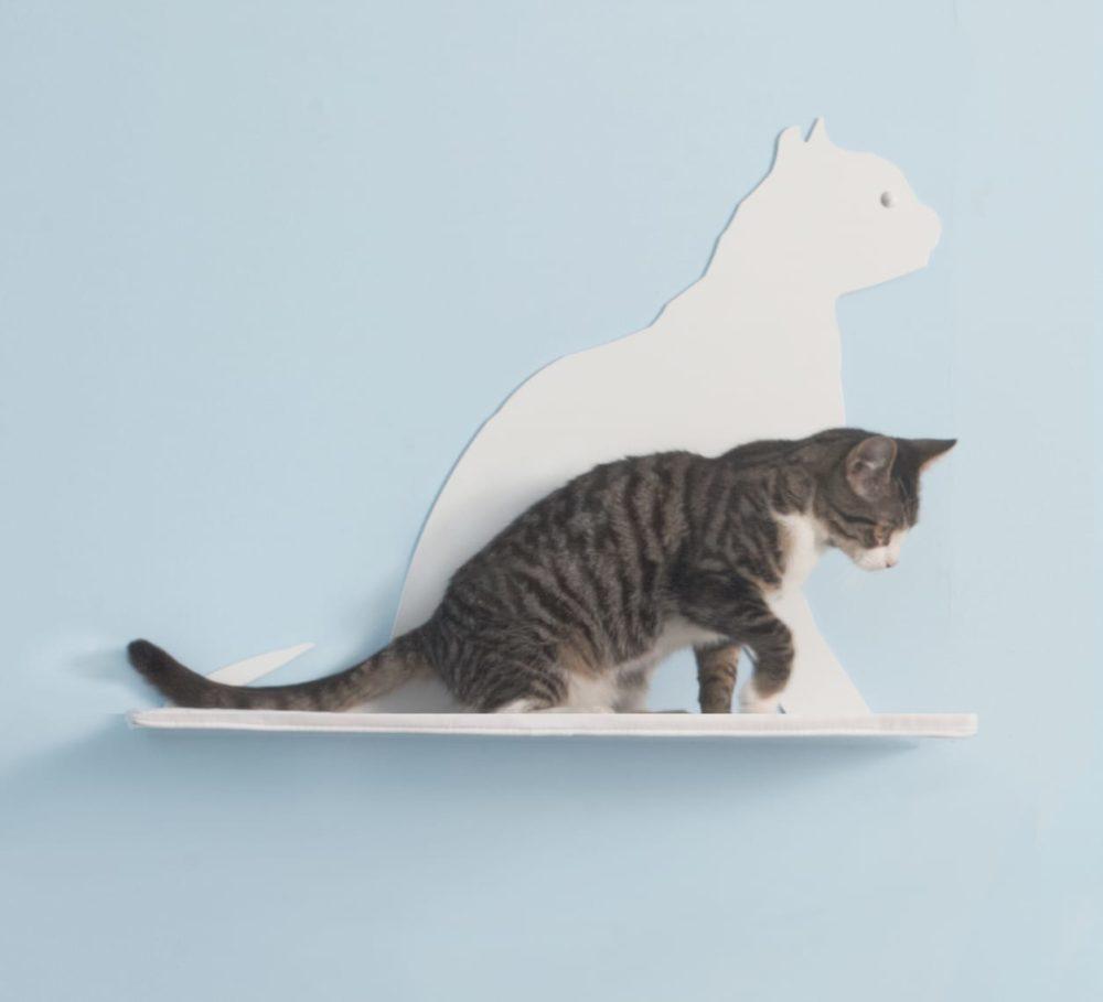 Cat Silhouette Cat Shelves Gaze White