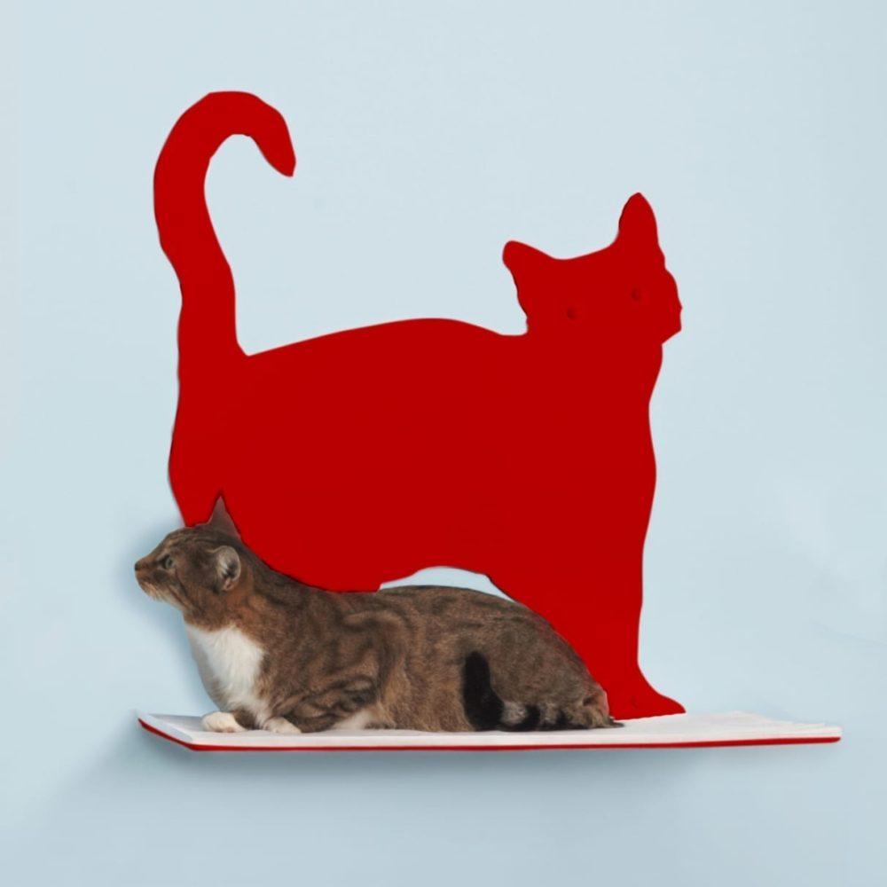 Cat Silhouette Cat Shelves Prance Red
