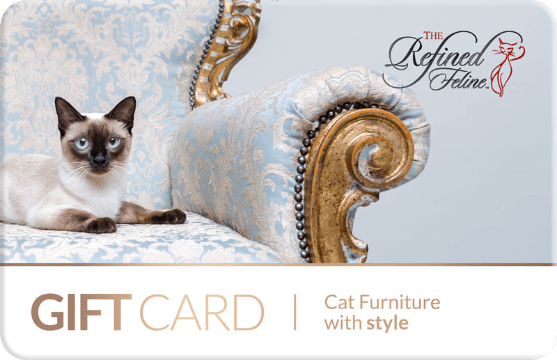 Gift card for cat furniture