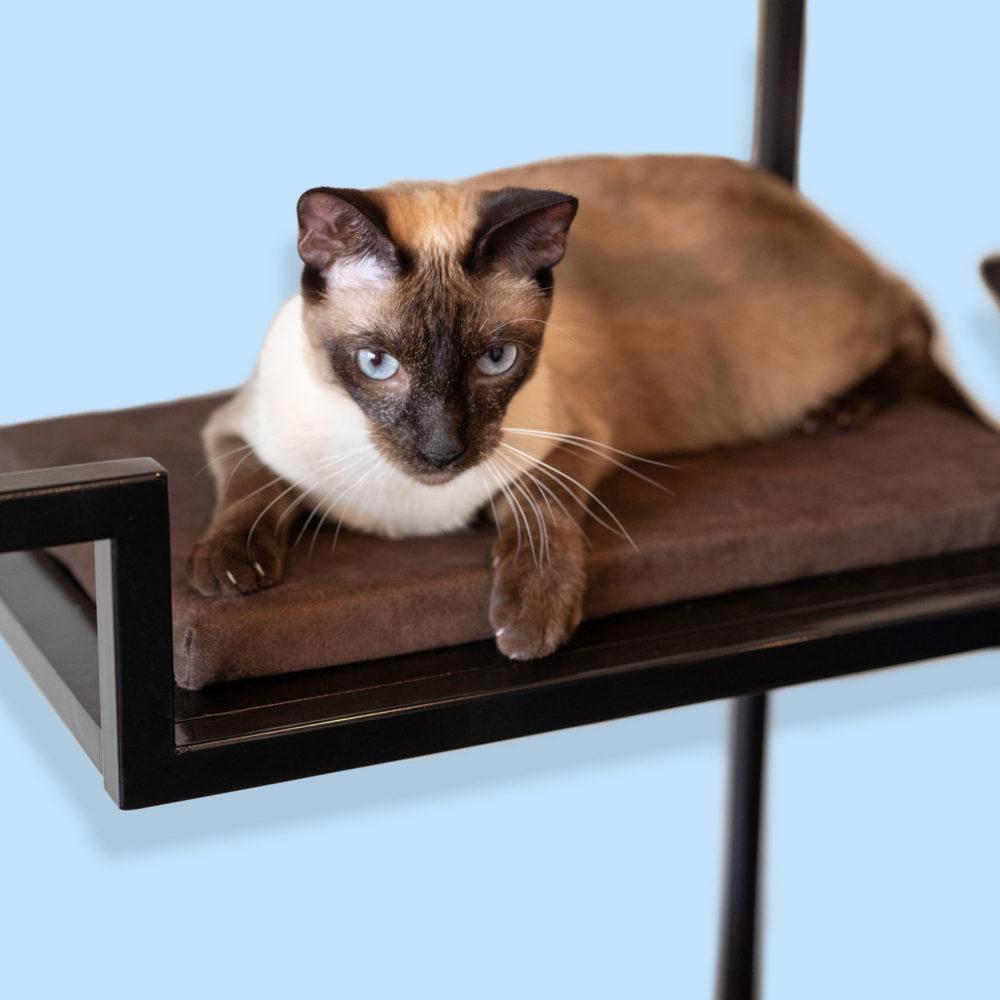 Cushions for Metropolitan cat condo
