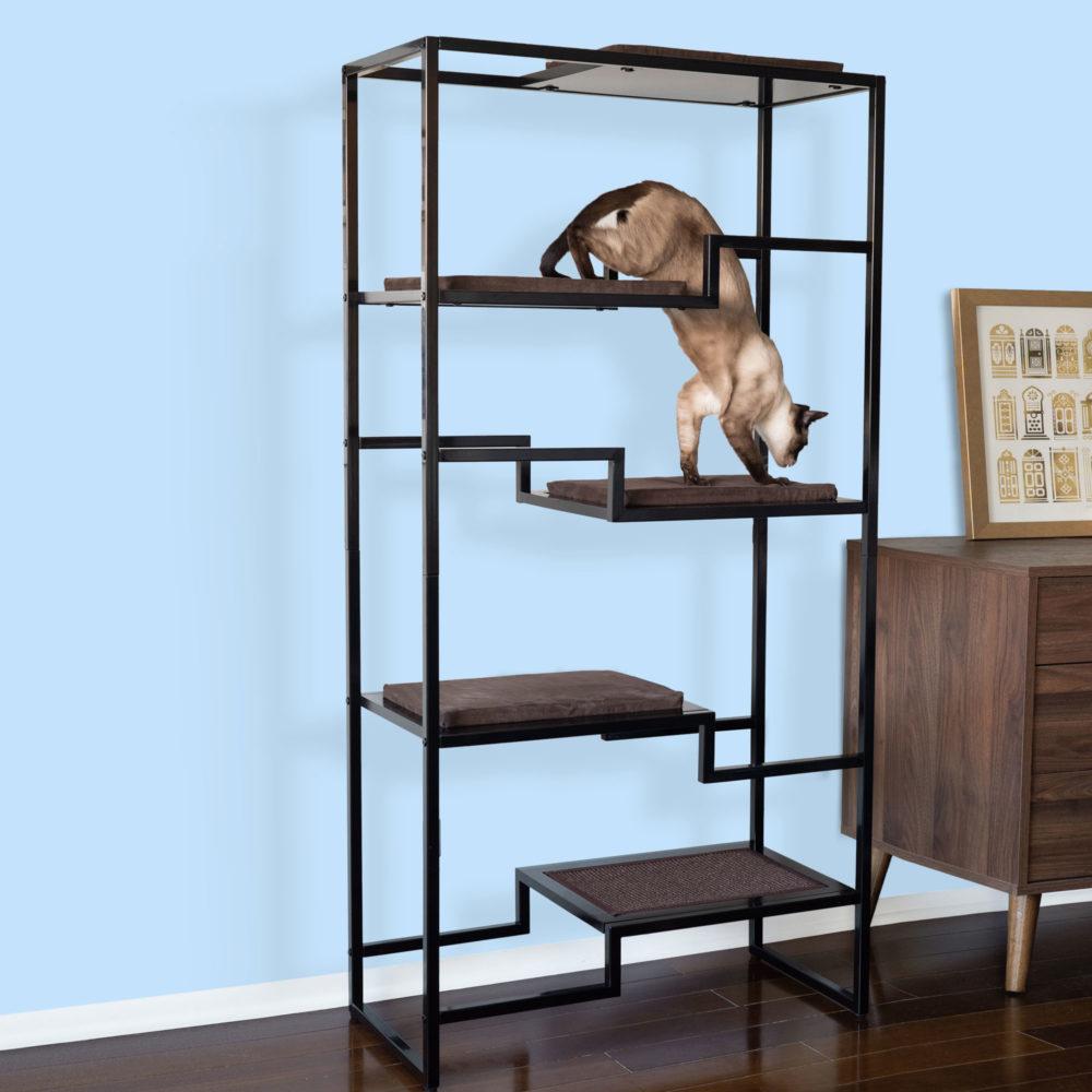 Metropolitan-Black-Cat-Condo-Brown-Cushion-SQ