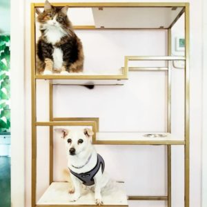 Metropolitan Cat Condo Gold
