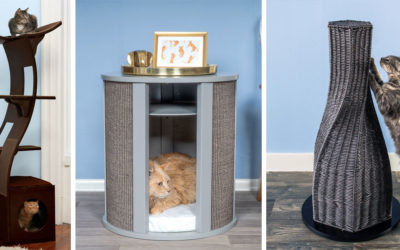 Best Modern Cat Furniture of The Refined Feline