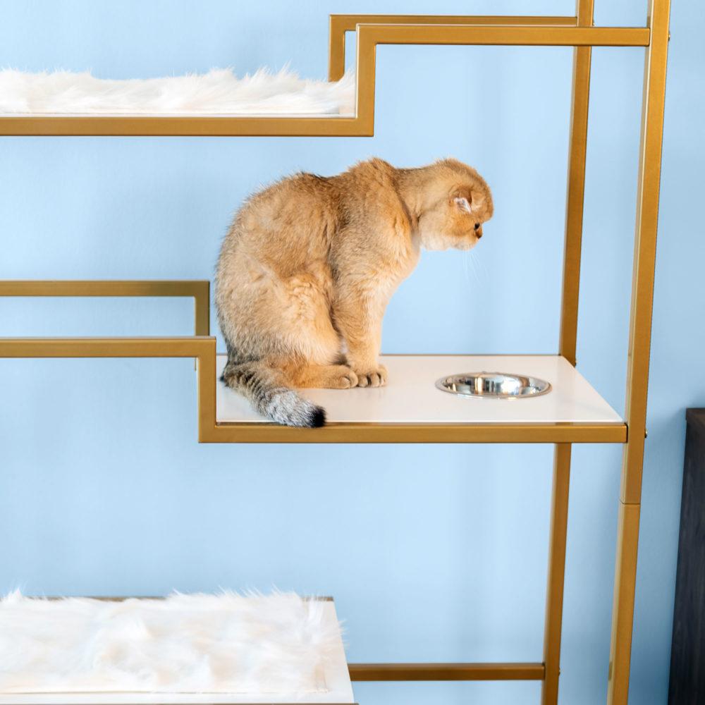 Metropolitan Cat Condo Food bowl platform for cat
