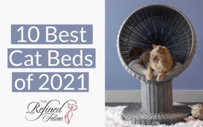 10 Best Cat Beds of 2021 (So Far)!
