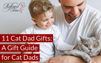 11 Cat Dad Gifts: A Gift Guide For Cat Dads