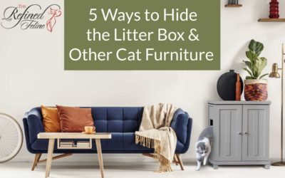 5 Ways to Hide The Litter Box and Other Cat Furniture