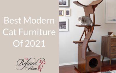 Best Modern Cat Furniture of 2021