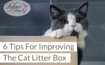 6 Tips For Improving The Cat Litter Box